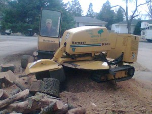 Stump grinding by Aerial Tree Service - Eau Claire, Chippewa Falls and Menomonie