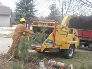 Brush cleanup & chipping by Aerial Tree Service - Eau Claire, Chippewa Falls and Menomonie
