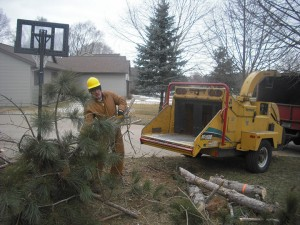 Tree limb chipping by Aerial Tree Service - Eau Claire, Chippewa Falls and Menomonie