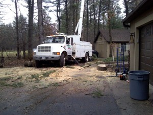 Tree Trimming & Removal by Aerial Tree Service - Eau Claire, Chippewa Falls and Menomonie